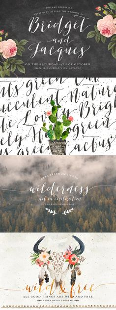 Modern calligraphy font willow bloom fonts