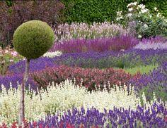 Lavendel im Garten Gestaltung Ideen Kombinationen Farben