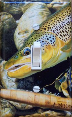 Brown Trout light switch.