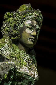 Stock photograph of a moss and lichen covered basalt statue of a Ramayana goddess in Bali Buddha Kunst, Buddha Art, Buddha Statues, Angel Statues, Statue Tattoo, Greek Statues, Ancient Ruins, Ganesh, Belle Photo