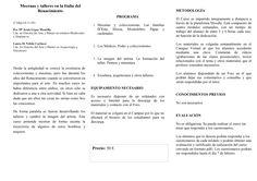"""Programa del curso a distancia """"Mecenas y talleres en la Italia del Renacimiento"""""""