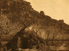 A Photograph of the Home of The Havasupai Indians.