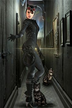 The Catwoman Diaries: Hide Out by Zulubean