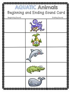 Animals Inspired Beginning and Ending Sound Cards.