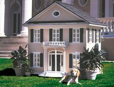 Creative Dog House Design Ideas_13