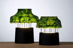 The Lampshade of Nir Meiri's Marine Light is Made from Dried Seaweed | Inhabitat - Sustainable Design Innovation, Eco Architecture, Green Building