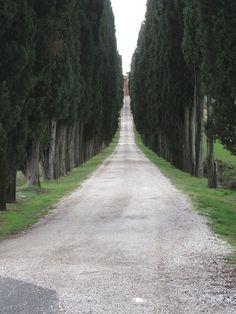 Locanda dell'Amorosa - Siena, province of Siena , Tuscany region Italy