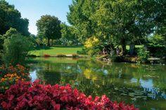 Garden view  #Valeggio Sul Mincio @Parco Hassan Giardino Sigurta'. A romantic place!