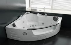Corner Jacuzzi Whirlpool Walk In Bathtub ~ http://lanewstalk.com/advantages-and-disadvantages-in-walk-in-bathtubs/