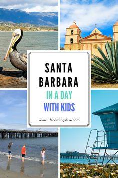 Santa Barbara in 1 d
