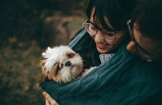 Shih Tzu Puppies: The Ultimate Guide for New Dog Owners Best Dogs For Kids, Shih Tzu Puppy, Pet Puppy, Shih Tzus, Training Your Dog, Favorite Person, Little Dogs, T Rex, Chinchillas