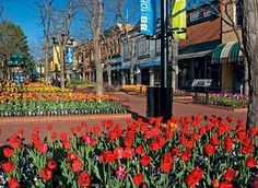 Pearl Street Mall in Boulder, Colorado. (wondering when someone took this picture since it's usually FULL of colorful people and activity! Colorado Springs, Boulder Colorado, Colorado Usa, Oh The Places You'll Go, Places To Visit, Moving To Colorado, Louisiana, Living In Alaska, University Of Colorado