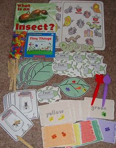 literacy bag for insect unit Literacy Bags, Preschool Literacy, Preschool Themes, Kindergarten Activities, Book Activities, File Folder Games, Animal Adaptations, Childhood Education, Preschools