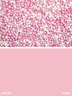 Sherwin-Williams paint color – In the Pink (SW 6583)