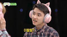 Exo Memes, Cat Ears, Kyungsoo, Kpop, Funny, Life, Magazine, Board, Catgirl