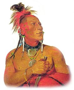 Picture of a Kansas / Kaw. Taken from http://www.warpaths2peacepipes.com/