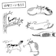 Hanako and and Ichiro by sayokoizumi I Love Cats, Crazy Cats, Cat Doodle, Cat Sketch, Cat Drawing, Illustrations And Posters, Cute Illustration, My Animal, Cat Art