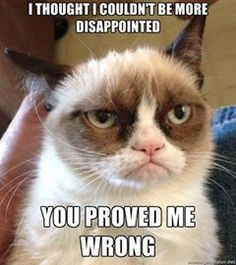 Funny pictures about Grumpy Cat finds Nemo. Oh, and cool pics about Grumpy Cat finds Nemo. Also, Grumpy Cat finds Nemo. Grumpy Cat Quotes, Grumpy Cat Humor, Grumpy Kitty, Cats Humor, Funny Shit, Funny Memes, Memes Humor, Funny Quotes, Funny Stuff