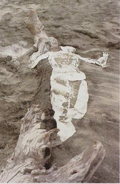 arterialtrees: ana mendieta untitled, Mexico, 1976. [cat. 21 I