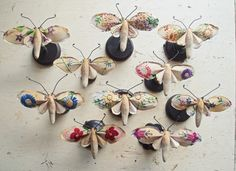 oh wonderful fabric bugs & butterflies