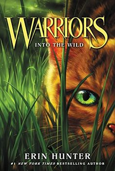 Warriors #1: Into the Wild (Warriors: The Prophecies Begin) might be something my lil would enjoy