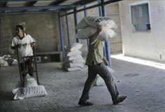 CICR suspende reparto de tiendas a desplazados palestinos por obstáculos israelíes | USA Hispanic PressUSA Hispanic Press