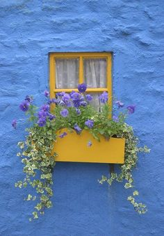 tumbling floral window box (ipinimg)