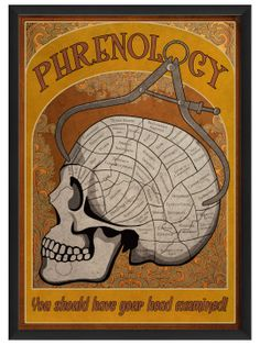 "Sign ::: Phrenology Poster ""You should have your head examined!"" - Gilt Home"