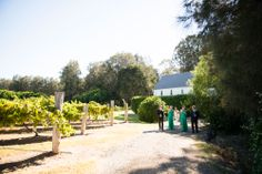 Bridal Party among the vines at Roberts Restaurant Circa 1876 | Image: Something Blue Photography http://www.somethingbluephotography.com.au/