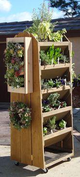 urban-vertical-vegetable-garden