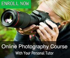 beginner online photography course