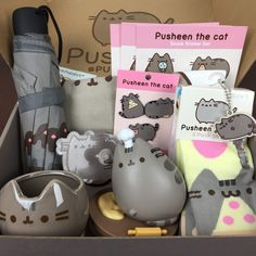 pusheen spring box - Google Search