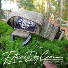 Collars   Leashes   Harnesses   Supplements   Extreme Dog Gear Camo Colors, Military Dogs, Collar And Leash, How To Make Notes, Service Dogs, Tactical Gear, Rottweiler, Large Dogs, Holland