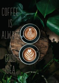 The Most Satisfying Cappuccino Latte Art - Coffee Brilliant Latte Art, Coffee Facts, Coffee Quotes, Momento Cafe, Deco Cafe, Cappuccino Machine, Italian Coffee, Coffee Pictures, Starbucks Recipes