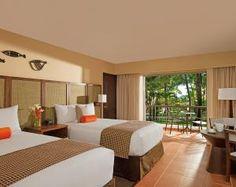 Comfy Rooms & Suites »