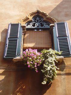 Verona, Italy - window with flowers - Amy Barnett photo