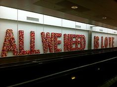 All We Need Is Love - Miami International Airport