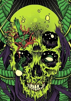 #Skulls, #Calaveras, #Bones, #Huesos                              …