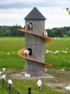23 Inspiring Goat Sheds & Shelters That Will Fit Your Homestead From raising goats, I know how to keep them happy. It starts by giving them a perfect shelter and we have suggestions for inspiring goat sheds just for you. Design Jardin, Garden Design, House Design, Goat Playground, Playground Ideas, Goat Shed, Goat Shelter, Sheep Shelter, Goat House