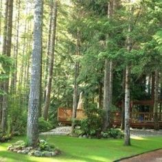 720 Sq. Ft. Tiny Cabin in Hoodsport, WA   Small Home Listings - Small Homes For Sale