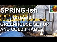 Spring-ish 🌿 Short Season Cold Climate Gardening                                Colorful Canary