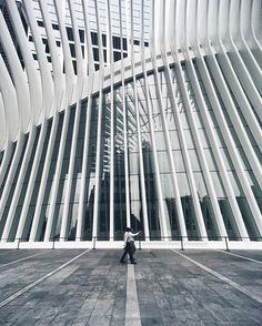 . . Big Bone / S. Calatrava 3 . . #Rio_Usa_Around / NYC . :: Futurism Architecture, Facade Architecture, Contemporary Architecture, Santiago Calatrava, Neo Futurism, Hotel Lobby Design, High Building, Zaha Hadid, Facades