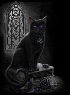 """Pagan Wicca Witch Witchcraft: """" Black Cat,"""" by Sheblackdragon. Crazy Cat Lady, Crazy Cats, Bastet, Magic Cat, Black Cat Art, Black Cats, Image Chat, Witch Cat, Male Witch"""