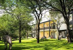 Priced from USD 475 the Royal Livingstone Hotel in Zambia on the Zambezi River is superiour luxury with a direct walkway to Victoria Falls. Yellow Cottage, Built In Bar, Victoria Falls, Story House, Maine House, Bay Window, Greatest Hits, Natural Wonders, Installation Art