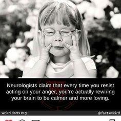 Some #wisdom #anger #changeYourMind #deepthoughts #smart #meditation #yoga #goodenergy #goodVibes #innerengineering #howl #holyorderofwildlife  #think #AsAManThinketh #willPower