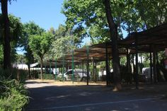 camping el brillante cordoba Pergola, Spain, Outdoor Structures, Plants, Cordoba, Glow, Outdoor Pergola, Sevilla Spain, Plant