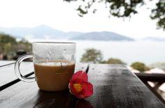 동백 그리고 커피
