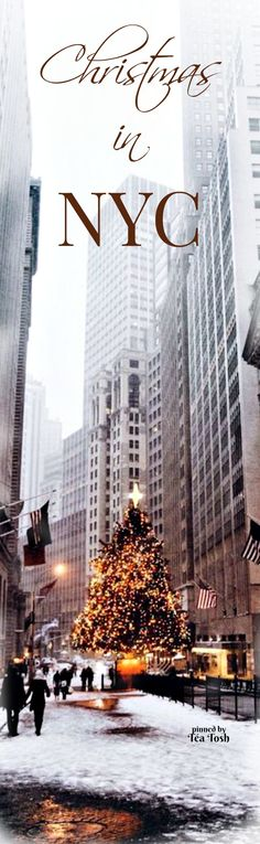 ❇Téa Tosh❇ Christmas In NYC