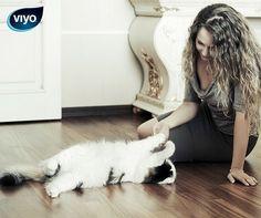 Vous partez pendant une semaine sans votre chat? N'oubliez pas de régler un 'catsitter'! Votre chat a besoin d'attention.