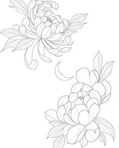 Japanese Flower Tattoo, Japanese Flowers, Japanese Art, Tattoo Drawings, Body Art Tattoos, Art Drawings, Chrysanthemum Drawing, Flor Tattoo, Flower Line Drawings
